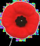 poppy-pin